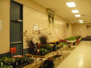 Marché horticole2008   - Tout est prêt pour accueillir les acheteurs -  Prise par Nicole Sanschagrin