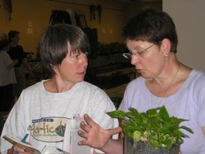 « J'te l'dis Nicole, j'ai vu un plant de tomates gros comme ça!!! » Prise par Guy Méthé