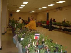 Encore un beau choix de plantes cette année.  Printemps 2004 Prise par Diane Héroux